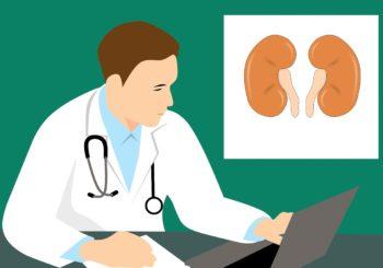 Begeleiding bij nierfalen